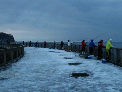 河口規制解除後に豊浦フィッシャリーナでアキアジ釣り(鮭釣り)