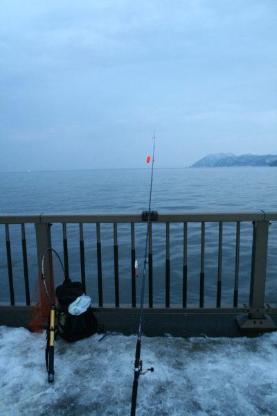 豊浦フィッシャリーナ 鮭釣り アキアジ釣り
