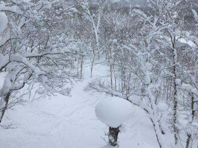 北海道・洞爺湖 雪国の暮らし 除雪のこと